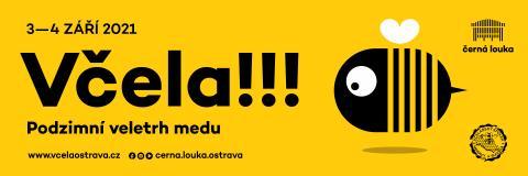 banner-vcela2021